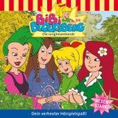 Folge 89: Die Junghexenbande von Bibi Blocksberg