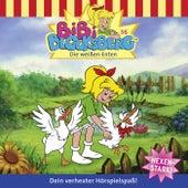 Folge 36: Die weißen Enten von Bibi Blocksberg