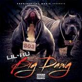 Big Dawg by Lil' Ru