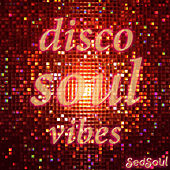 Disco Soul Vibes by Various Artists
