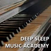 Deep Sleep Music Academy by Deep Sleep Music Academy