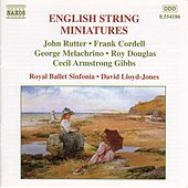 English String Miniatures by Various Artists