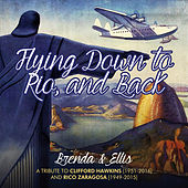 Flying Down to Rio - - And Back by Brenda