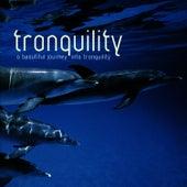 Tranquility by Crimson Ensemble