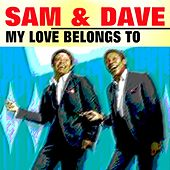 My Love Belongs to You de Sam and Dave