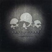 Black Brick Road by Lake Of Tears