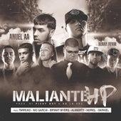 Maliante Hp (Remix) [feat. Anuel Aa, Farruko, Almighty, Darkiel, Bryant Myers, Nio Garcia & Noriel] von Benny Benni