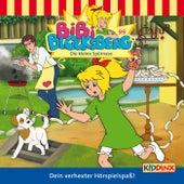 Folge 99: Die kleine Spürnase von Bibi Blocksberg