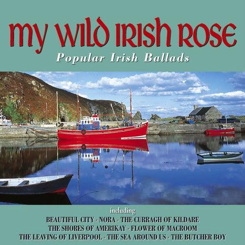 My Wild Irish Rose by Various Artists