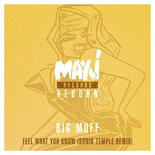 Feel What You Know (Sonik Temple Remix) by Big Muff