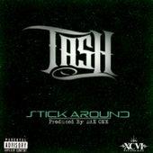 Stick Around by Tash