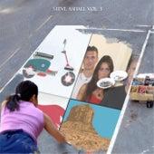 Steve Ashall, Vol. 3 by Steve Ashall