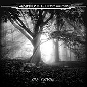 In Time de Andrzej Citowicz