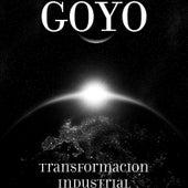 Transformacion Industrial de Goyo