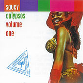 Saucy Calypso by Various Artists