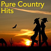 Pure Country Hits de Various Artists
