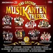 Das grosse Musikantentreffen   Folge 25 von Various Artists