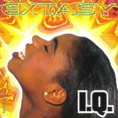 Extasy von IQ