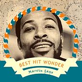 Best Hit Wonder by Marvin Gaye