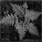 Confluencias I: Selva de Various Artists