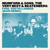 Fool You've Landed (Baio Remix) de Mumford & Sons
