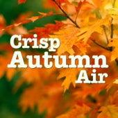 Crisp Autumn Air von Various Artists