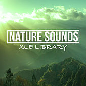 Nature Sound Library by Various Artists