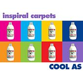 Cool As di Inspiral Carpets