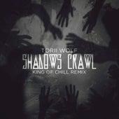 Shadows Crawl by Torii Wolf