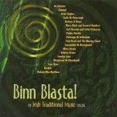 Binn Blasta! The Irish Traditional Music Special by Various Artists