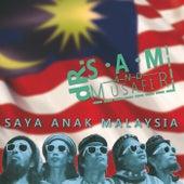 Saya Anak Malaysia de Musafir