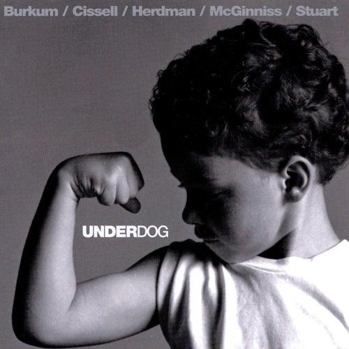 Underdog by Audio Adrenaline