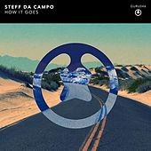 How It Goes by Steff Da Campo