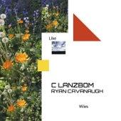 Like Miles by C Lanzbom