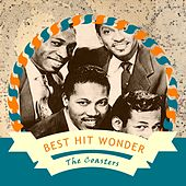 Best Hit Wonder van The Coasters