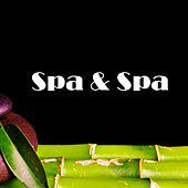 Spa & Spa by S.P.A