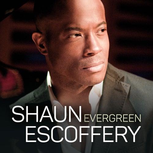 Evergreen by Shaun Escoffery