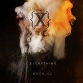 Everything Is Burning (Metanoia Addendum) de IAMX