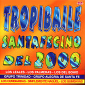 Tropibaile Santafecino by Various Artists