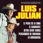 12 Super Exitos de Luis Y Julian