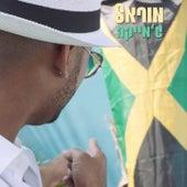 Jamaica von Morel