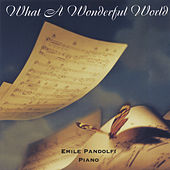 What a Wonderful World de Emile Pandolfi