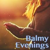 Balmy Evenings de Various Artists