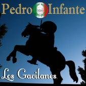 Imprescindibles (Los Gavilanes) van Pedro Infante
