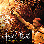 No Me Digan - Single de Ariel Prat