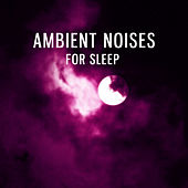 Ambient Noises for Sleep – Best New Age Music for Sleep, Insomnia Cure, Sleep Disorder, Healing Sounds de Calming Sounds Trouble Sleeping Music Universe