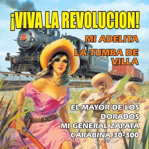 Viva la Revolucion by Los Halcones De Salitrillo