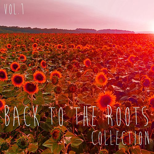 Back to the Roots Collection, Vol. 1 - Selection of Deep House by Various Artists