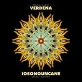 Split EP di Verdena