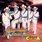 Espejo De Cantina by Cardenales De Nuevo León